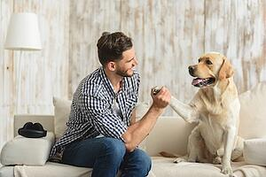 Finding-Pet-Friendly-Apartment.jpg