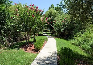 landscape walkway around apartment