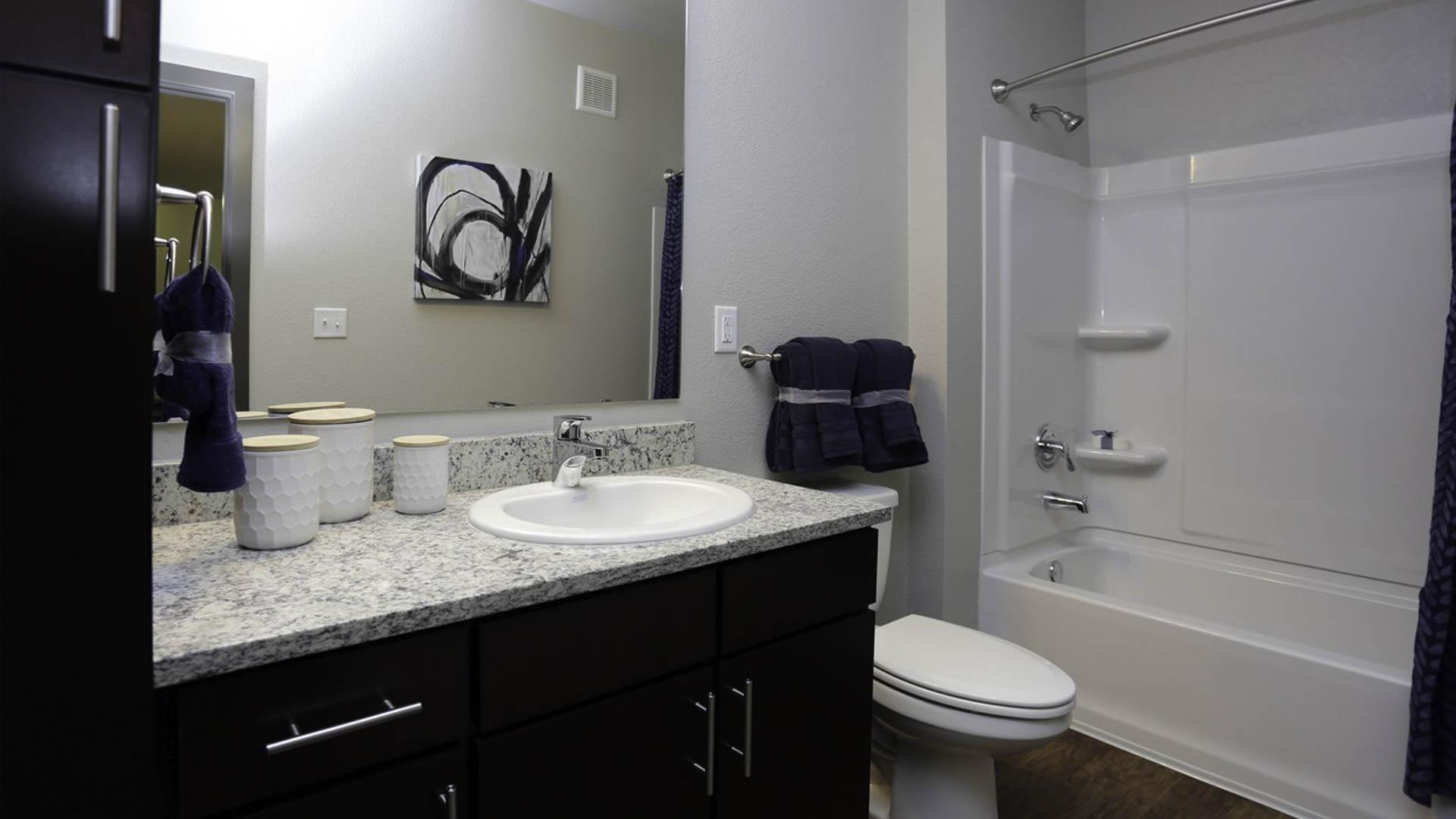 Springs at Allison Valley bathroom