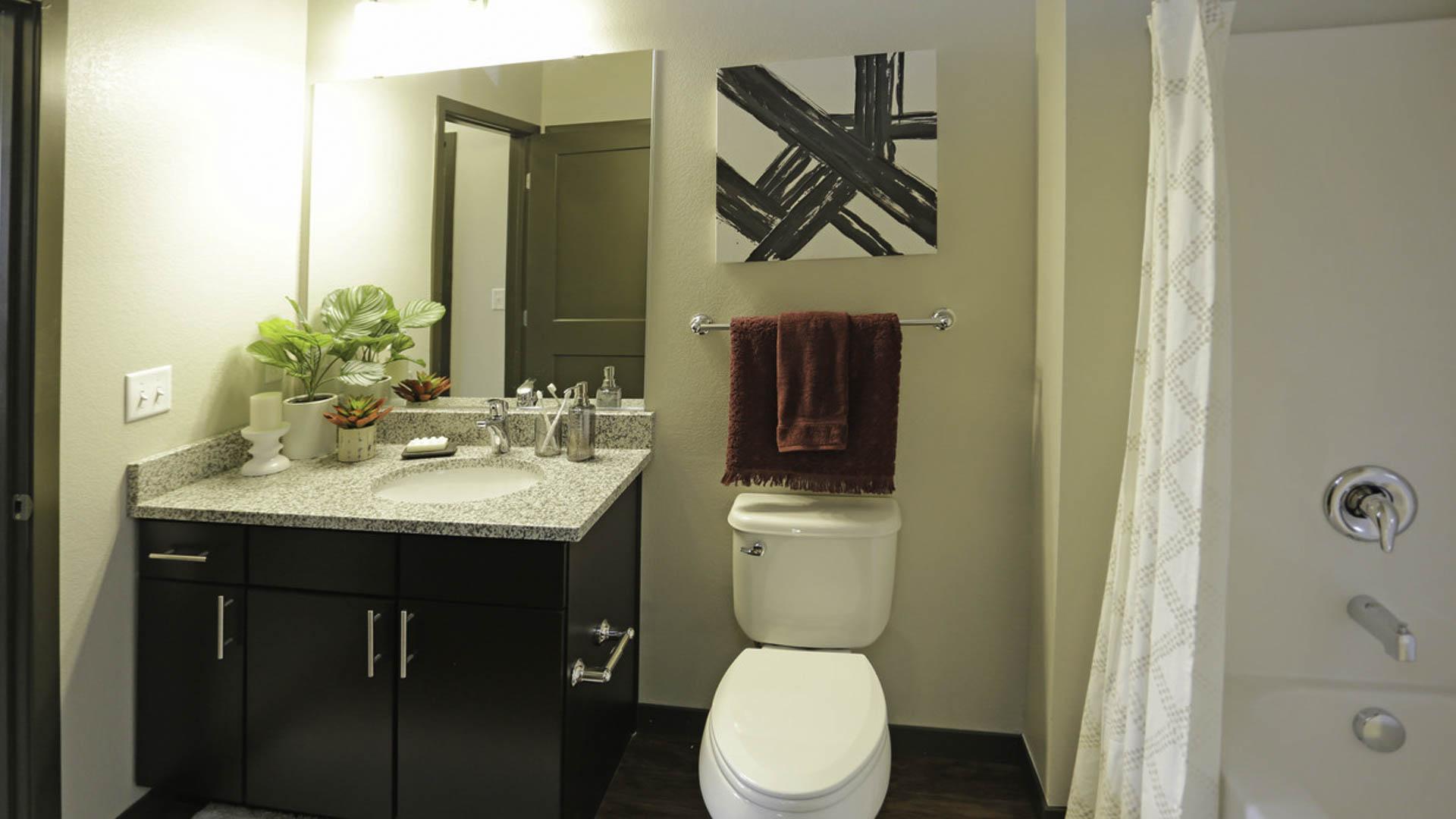 Springs at Cobblestone Lake bathroom