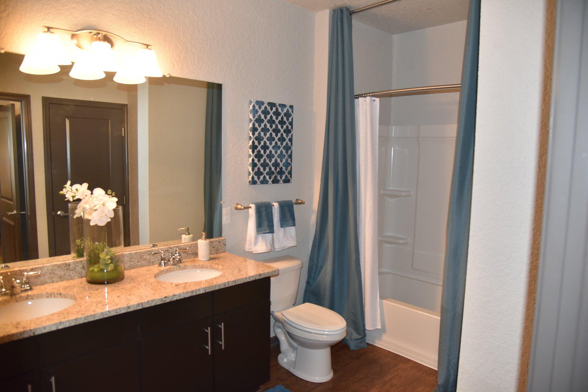 Springs at Knapp's Crossing bathroom