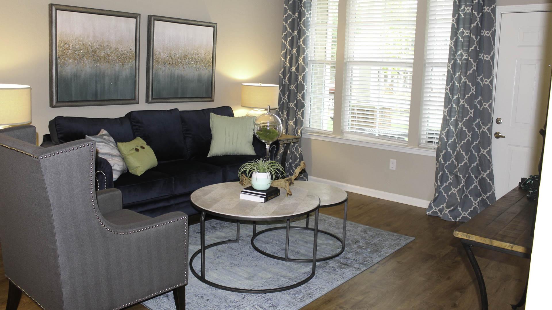 Springs at McDonough living room
