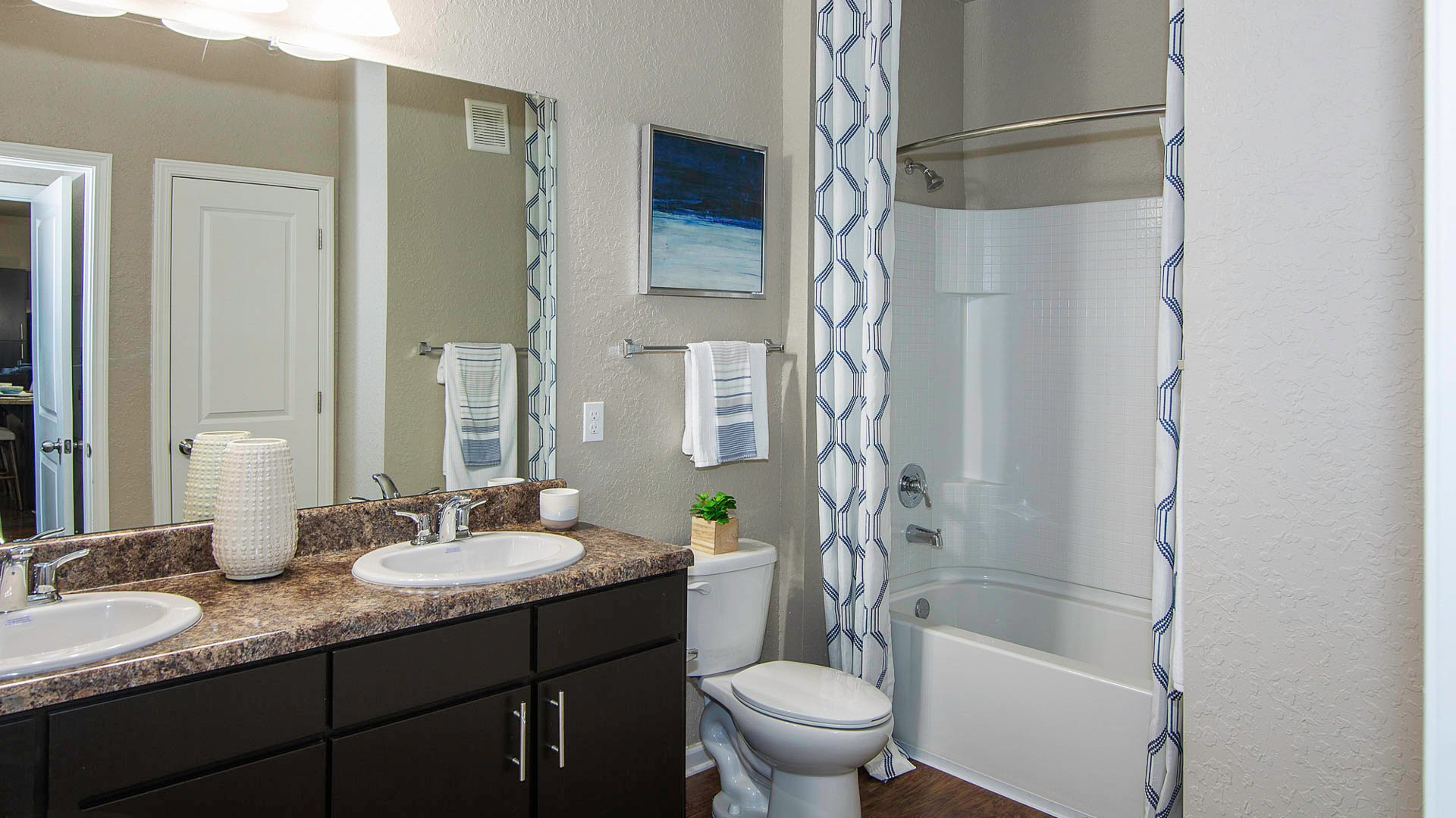 Springs at Port Orange bathroom