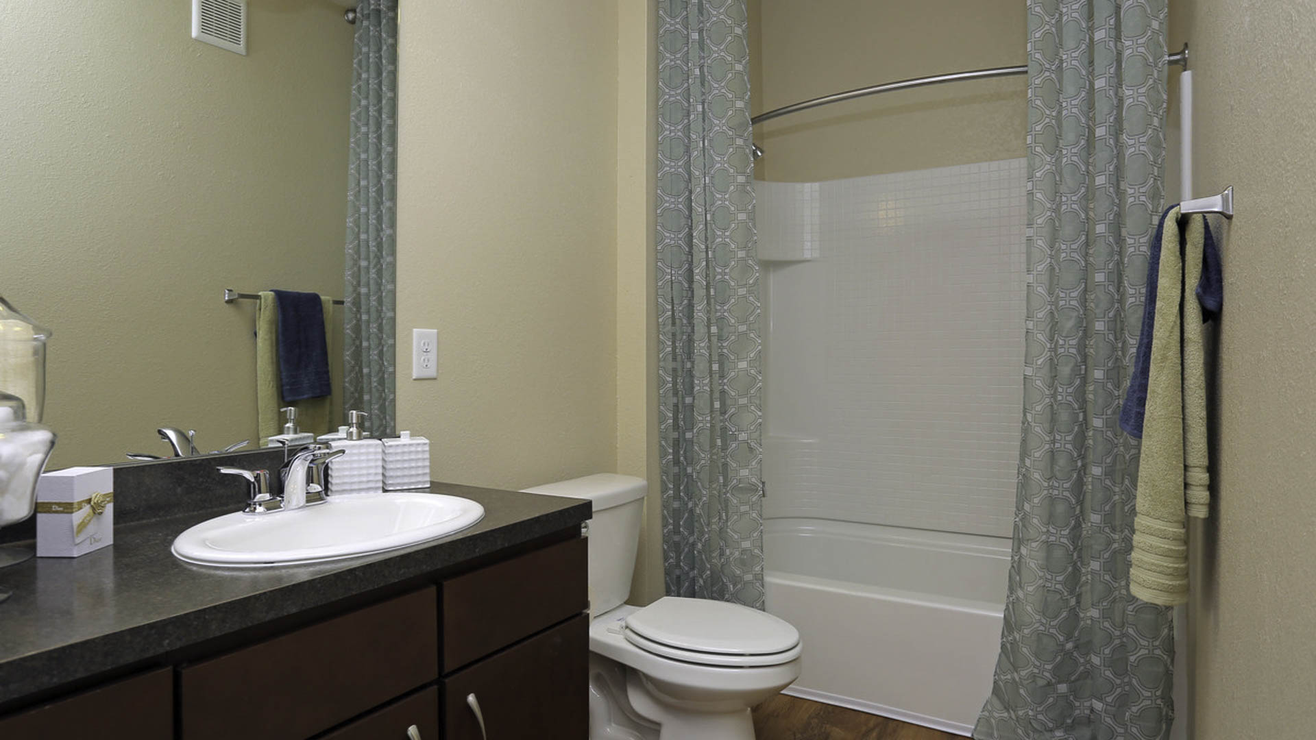 Springs at Woodlands South bathroom