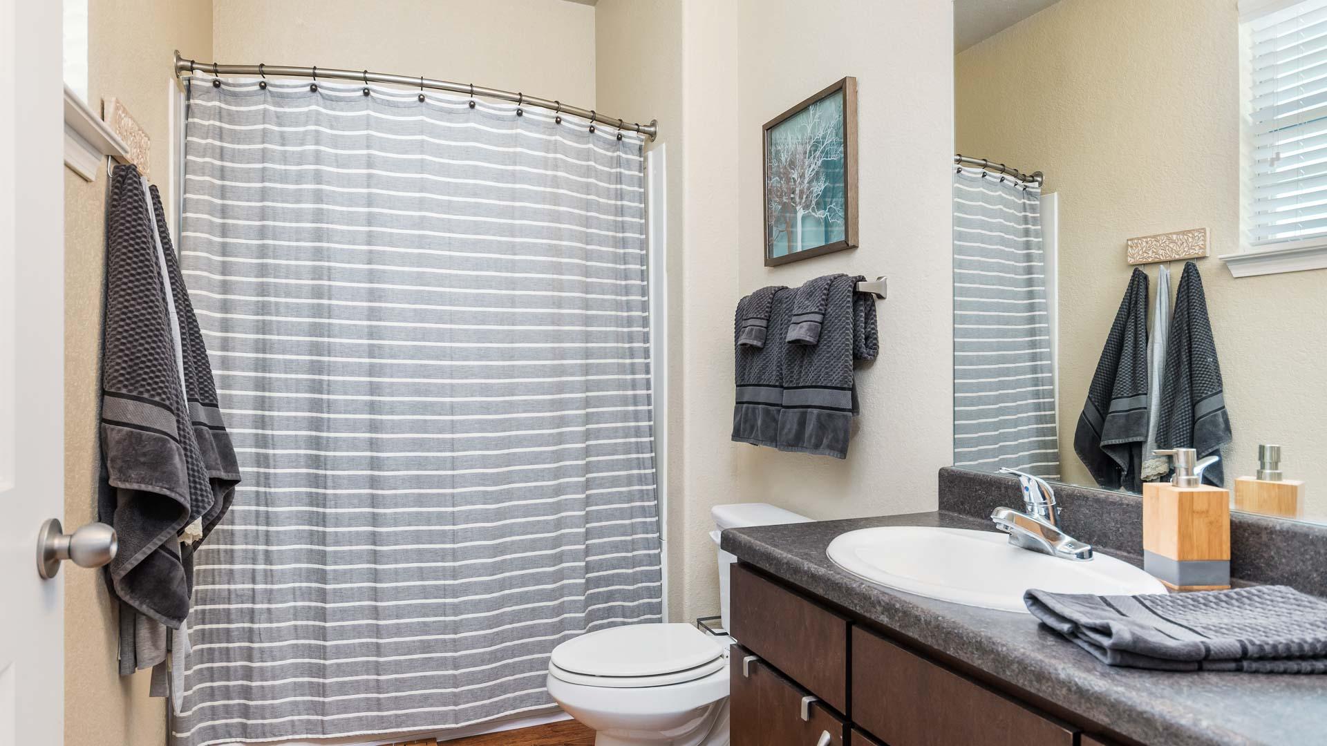 apartment Bathroom in San Antonio at Springs at Alamo Ranch-34