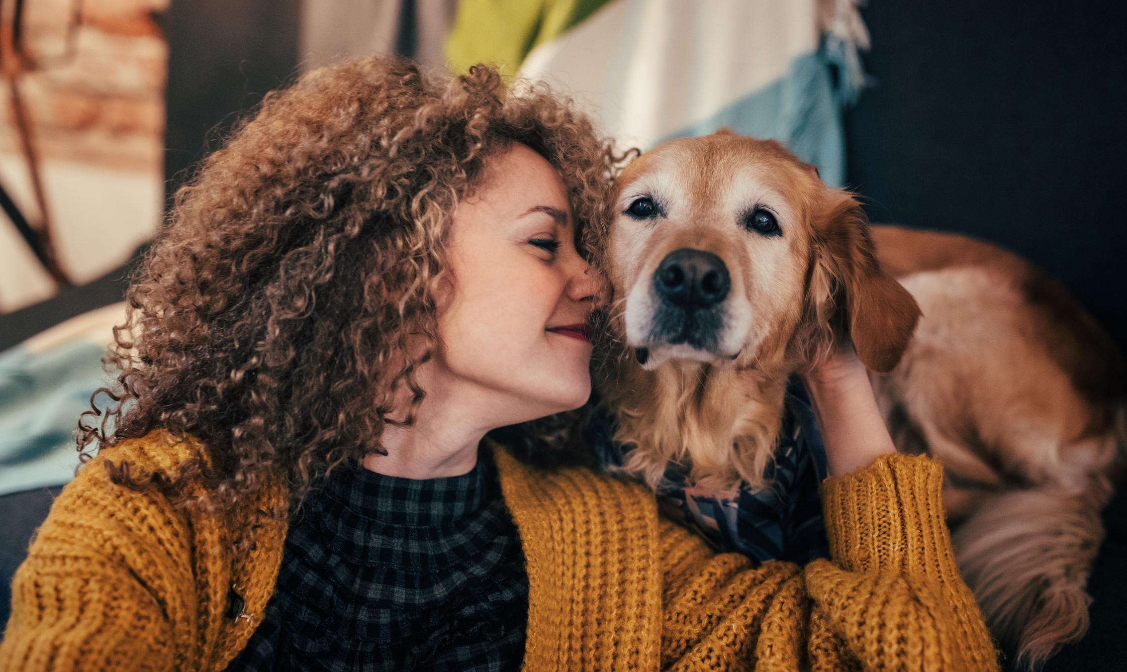 Finding a Qualified Pet Sitter