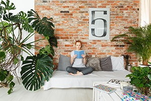 Decorating Your Apartment with Faux Plants