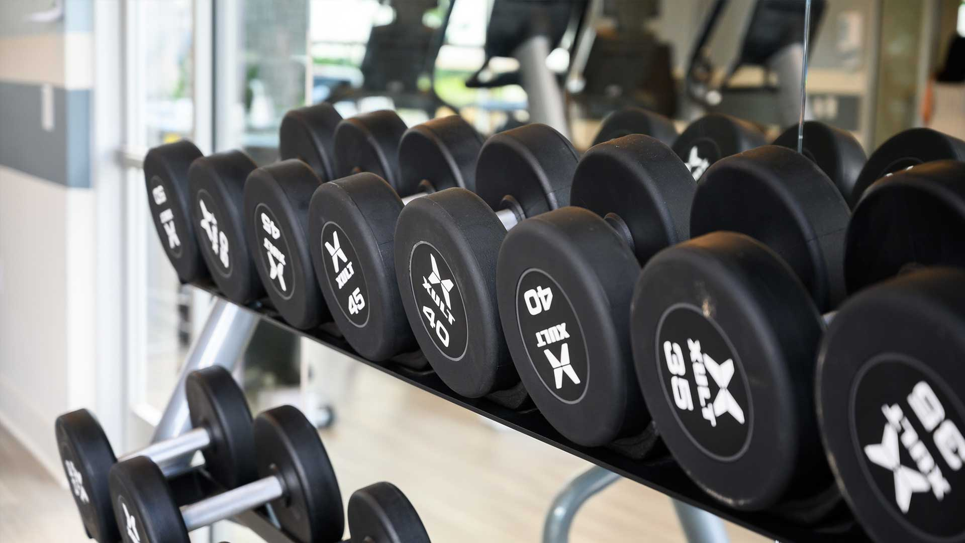 Free weights in fitness center Springs at Sun Prairie Apartments in Sun Prairie